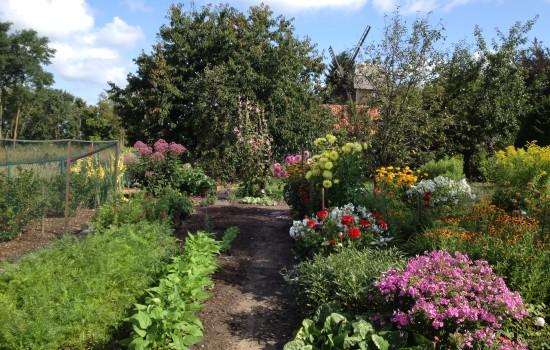 Garten beete